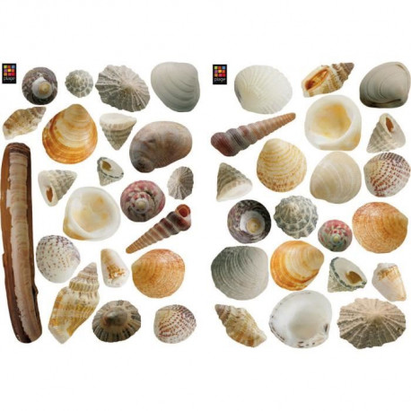 PLAGE Stickers adhésif mural Taille S - Coquillages2 planches 29,7 x 21 cm, divers motifs