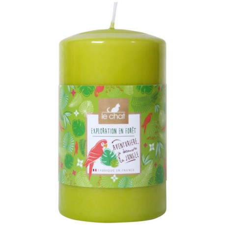 LE CHAT Bougie cylindrique Exploration en foret - Grand format : Ø 6,8 x H 11,5 cm - Parfum : foret tropicale - Couleur : vert
