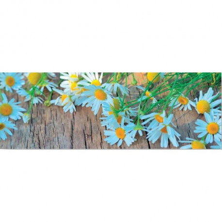 Affiche papier - Fresh Flowers On The Wooden Table  -  33x95 cm
