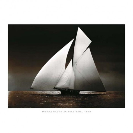 Affiche papier -  Iverna Yacht at Full Sail, 1895  - Photography Collection  - 60x80 cm